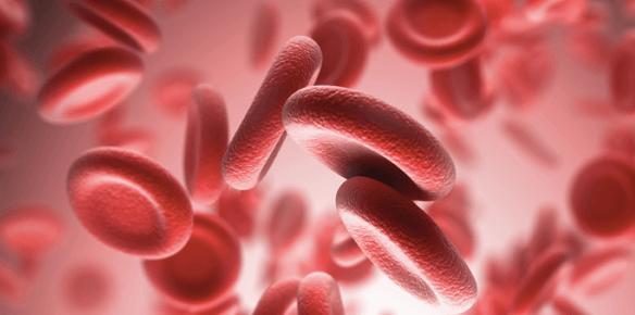 Biologia molecular y hematología