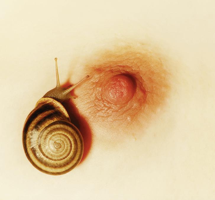 El estudio de los genes. Foto Metamorfosis de Mar Gascó Sabina